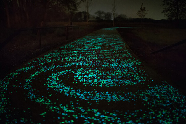 hol 3 1 - Holanda cria ciclovia que brilha no escuro inspirada na arte de Van Gogh