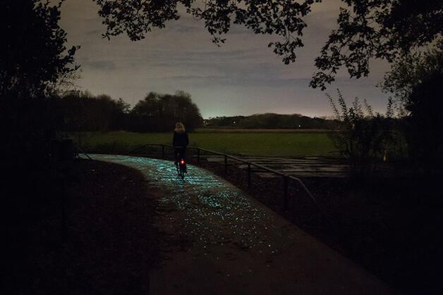 hol 5 - Holanda cria ciclovia que brilha no escuro inspirada na arte de Van Gogh
