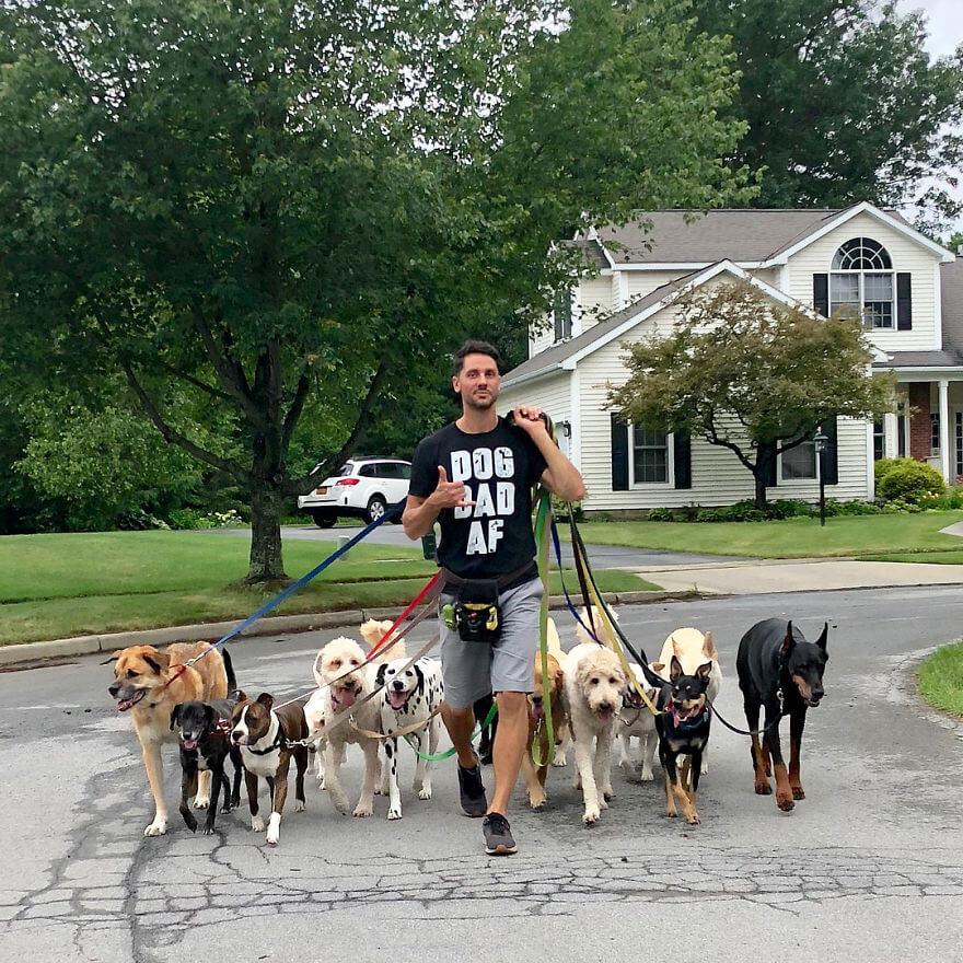 4 - Esses cachorros caminham juntos e tiram uma foto juntos todos os dias