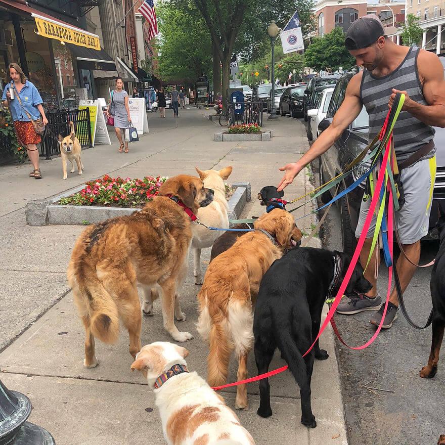 9 - Esses cachorros caminham juntos e tiram uma foto juntos todos os dias