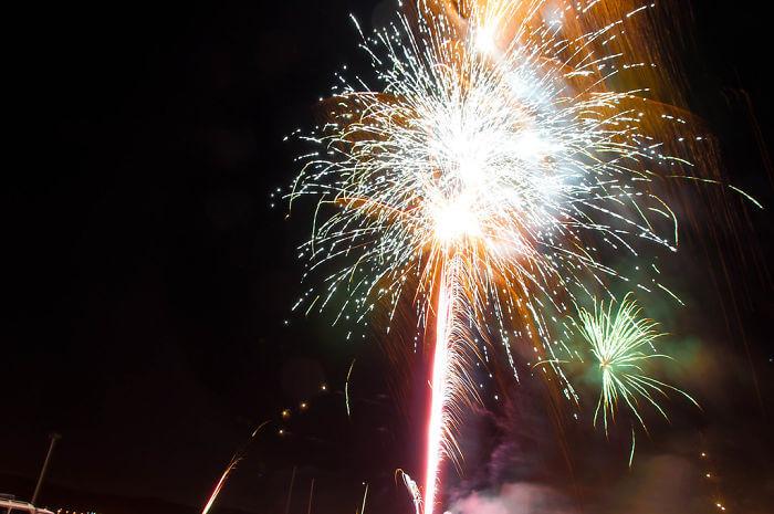 people comfort shelter dog july 4 fireworks 5d1da7bad5e32 700 - As pessoas deixaram de comemorar o 4 de Julho nos Estados Unidos para confortar animais em abrigos