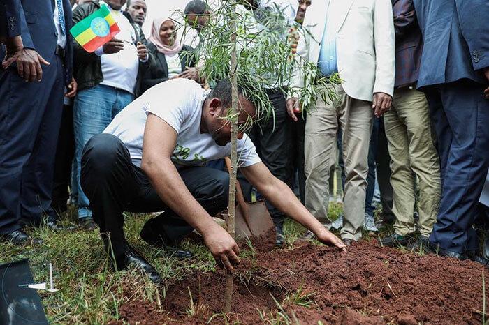 350 million trees planted record green legacy ethiopia 5d41550d731d6 700 - Etiópia quebra recorde mundial plantando 350 milhões de mudas em 12 horas