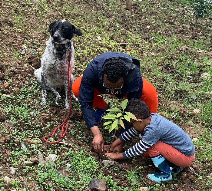 350 million trees planted record green legacy ethiopia 5d41575c5dc11 700 - Etiópia quebra recorde mundial plantando 350 milhões de mudas em 12 horas