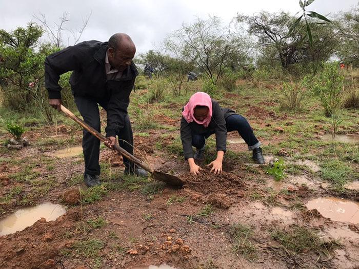 350 million trees planted record green legacy ethiopia 5d415c4b91e80 700 - Etiópia quebra recorde mundial plantando 350 milhões de mudas em 12 horas