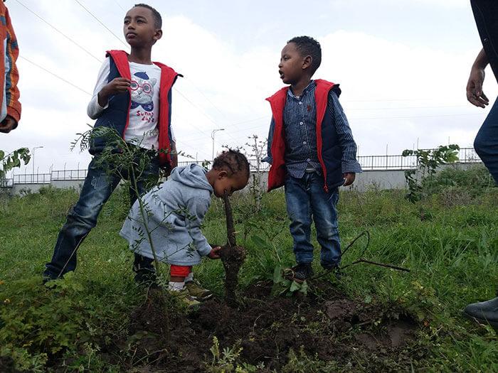 350 million trees planted record green legacy ethiopia 5d415e31a1754 700 - Etiópia quebra recorde mundial plantando 350 milhões de mudas em 12 horas