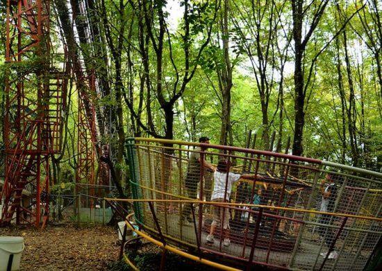 ai pioppi 2 - Conheça o parque de diversões em meio a floresta com zero eletricidade