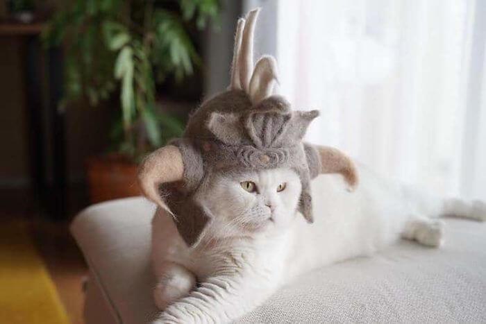 hair cat hats ryo yamazaki 11 5d53d13770310 700 - Dono de gatos cria solução para pelos caídos e a transforma em hobby