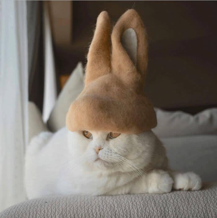 hair cat hats ryo yamazaki 20 5d53d145b7675 png 700 - Dono de gatos cria solução para pelos caídos e a transforma em hobby