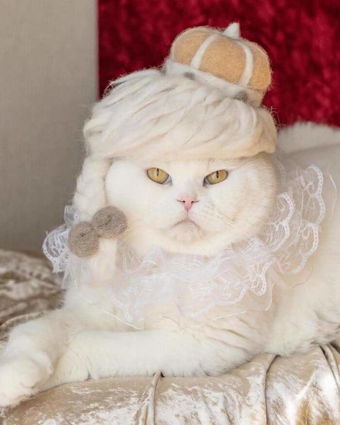 hair cat hats ryo yamazaki 3 5d53d127853e6 700 - Dono de gatos cria solução para pelos caídos e a transforma em hobby