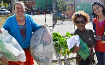 montagem mulher com verdura e mulher com lixo 1280x720 1 356x220 - Inicio