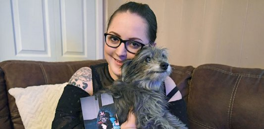 woman adopts childhood dog without knowing nicole grimes 11 5d7a51ad507ca  700 1 533x261 - Inicio