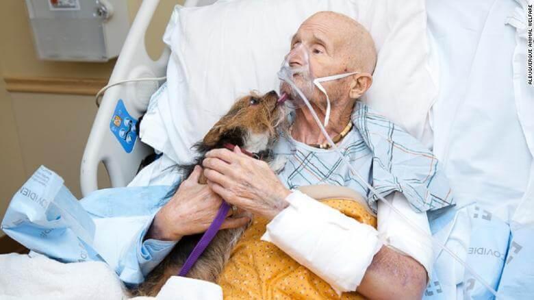 191021123627 01 veteran reunited with dog exlarge 169 - Veterano do Vietnam em cuidados paliativos consegue realizar seu último desejo antes de morrer, ver seu amado cachorro