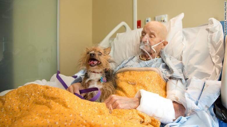 191021123630 02 veteran reunited with dog exlarge 169 - Veterano do Vietnam em cuidados paliativos consegue realizar seu último desejo antes de morrer, ver seu amado cachorro