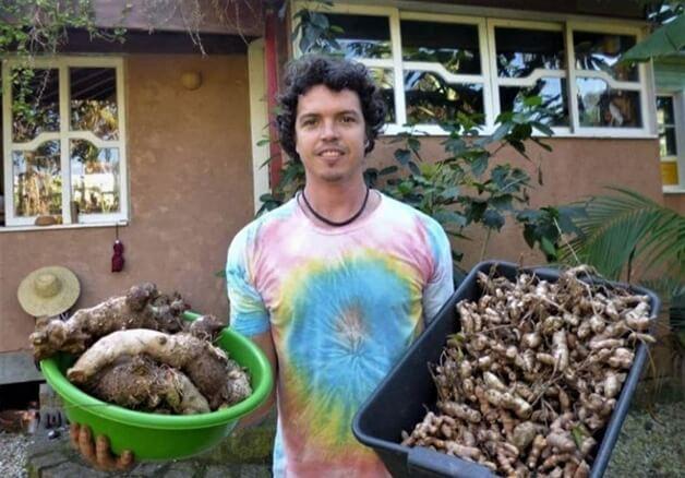 Floripa Agrotóxicos 1 - Está na lei! Florianópolis é a primeira cidade brasileira a banir agrotóxicos das lavouras