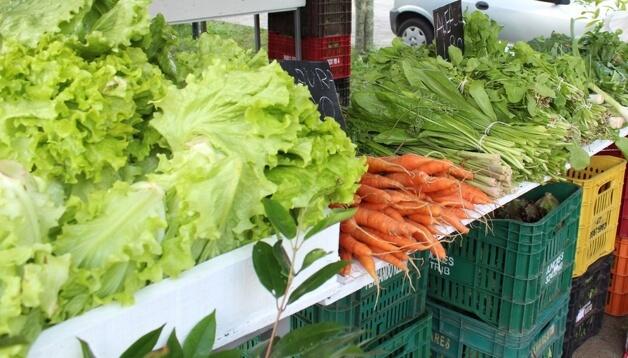 Floripa Agrotóxicos 2 - Está na lei! Florianópolis é a primeira cidade brasileira a banir agrotóxicos das lavouras