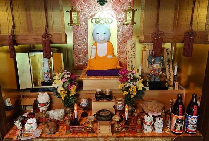 cat temple cafe nekojizo japan 13 5da7104d528e1 700 - No Japão há um santuário de gatinhos onde os monges são bichanos