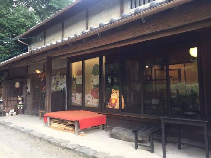 cat temple cafe nekojizo japan 2 5da71038ccb29 700 - No Japão há um santuário de gatinhos onde os monges são bichanos