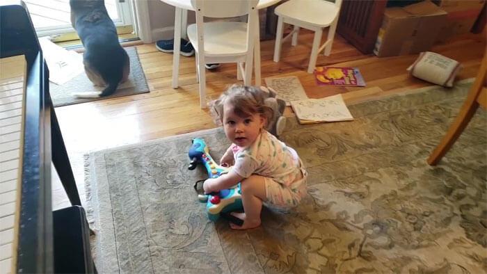 vídeo cachorro pianista e bebê 1 - Pai grava vídeo sem querer da filha dançando enquanto seu cãozinho toca piano