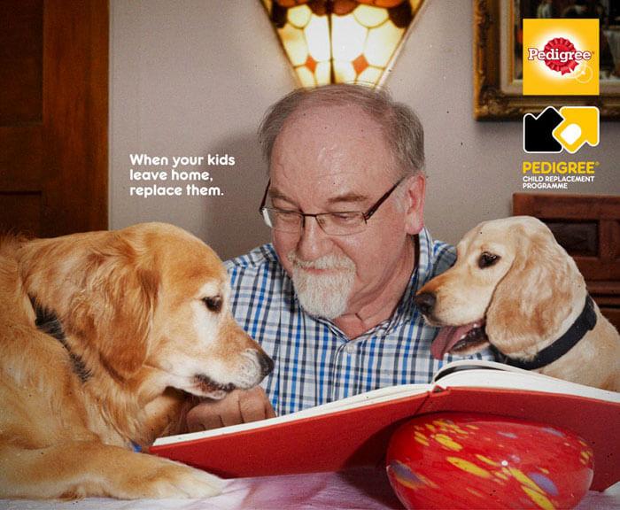 pedigree22 - Campanha publicitária mostra como um cãozinho pode transformar a vida de uma pessoa