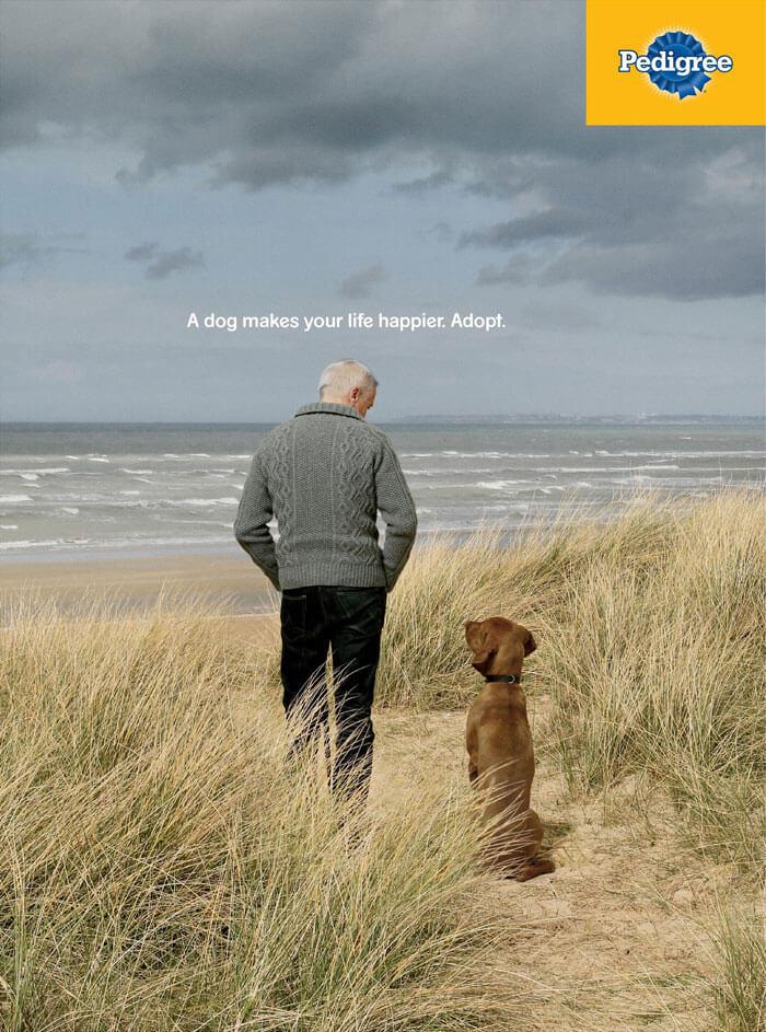 pedigree32 - Campanha publicitária mostra como um cãozinho pode transformar a vida de uma pessoa