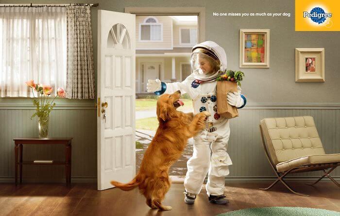 pedigree51 - Campanha publicitária mostra como um cãozinho pode transformar a vida de uma pessoa