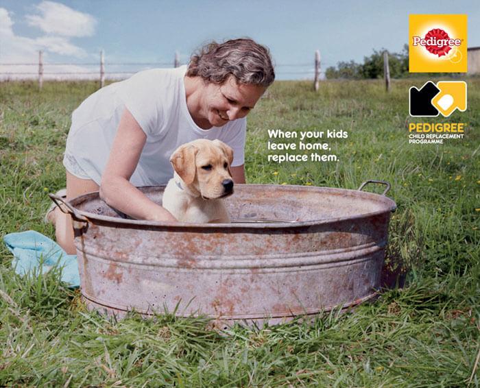 pedrigree12 - Campanha publicitária mostra como um cãozinho pode transformar a vida de uma pessoa