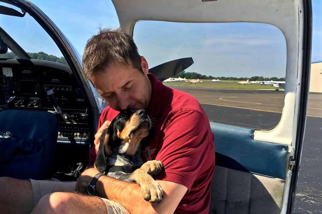 homem salva caes2 - Ex-soldado compra avião para salvar cães e gatos da eutanásia
