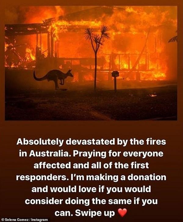 selena gomes - A cantora P!nk doou 500 mil dólares para ajudar nos incêndios florestais da Austrália