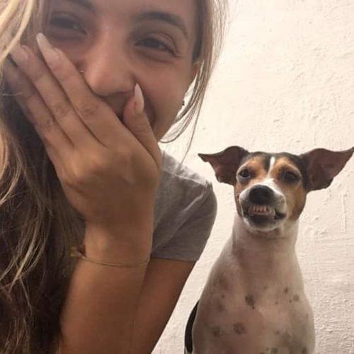 82952934 1021847708202654 7156312521204385865 n 500x500 1 - Ela cuida de uma creche para cães e convidou esse cachorrinho para uma foto e olha o sorrisão que ele abriu