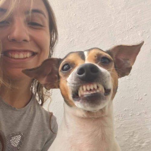 84161236 491752598402582 5692733182795534065 n 500x500 1 - Ela cuida de uma creche para cães e convidou esse cachorrinho para uma foto e olha o sorrisão que ele abriu