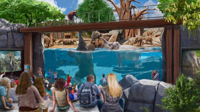 bio parque2 - Zoológico carioca ZooRio vira Bioparque e decreta fim do enjaulamento de animais