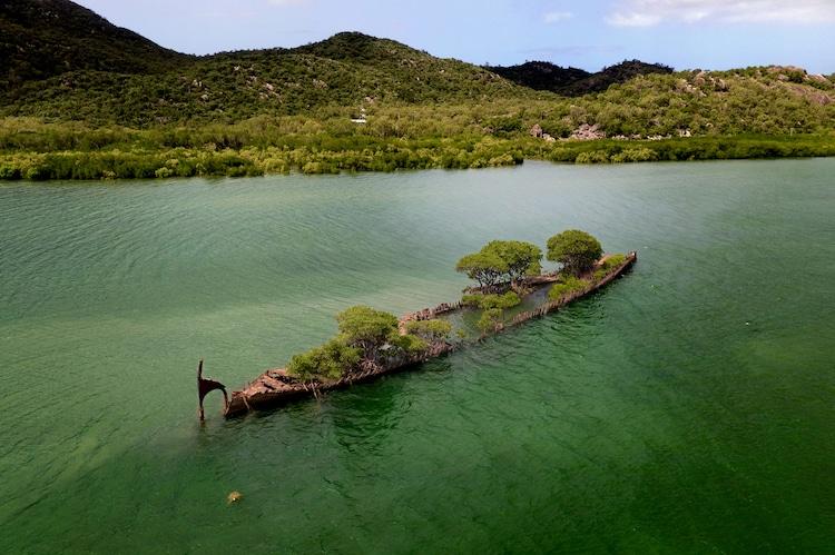 navio confiscado natureza 1 - Natureza toma conta de navio que naufragou há mais de 100 anos