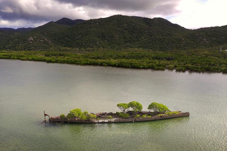 navio confiscado natureza 3 - Natureza toma conta de navio que naufragou há mais de 100 anos