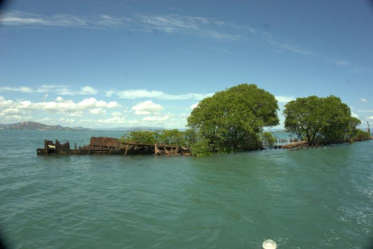 navio confiscado natureza 5 - Natureza toma conta de navio que naufragou há mais de 100 anos