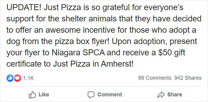 11 5e5e56a66c64f 700 - Pizzaria faz parceria com abrigo e ajuda a adotar cães com fotos em caixas de pizza
