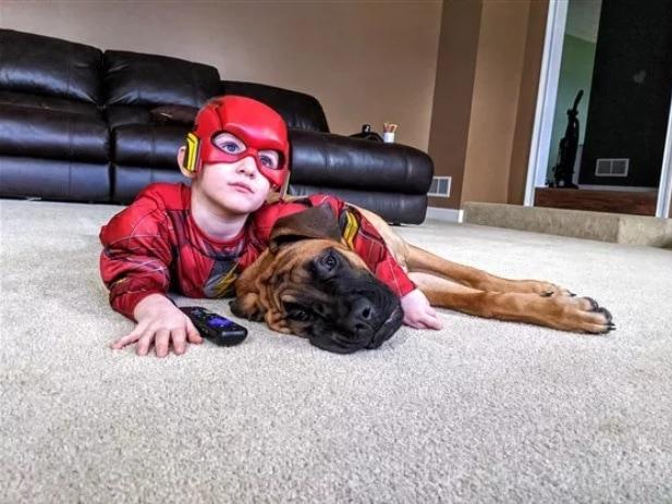 menino castigo cachorro2 - Garoto fica de castigo e cachorro o acompanha para que não fique sozinho