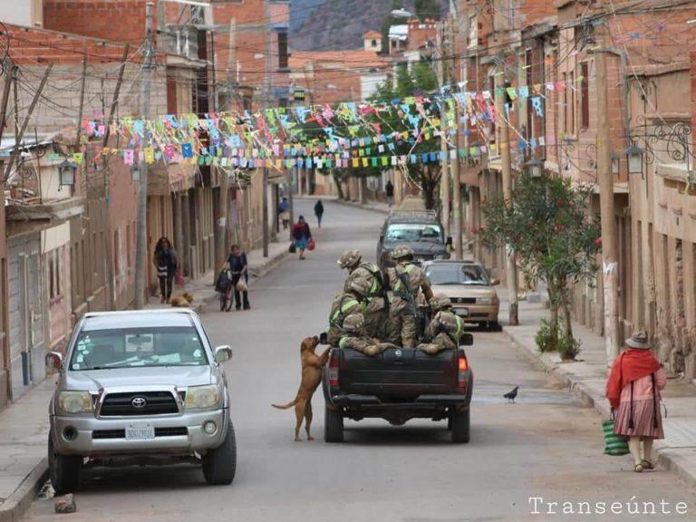 001 - Cães abandonados perseguem carro de militares e acabam sendo adotados
