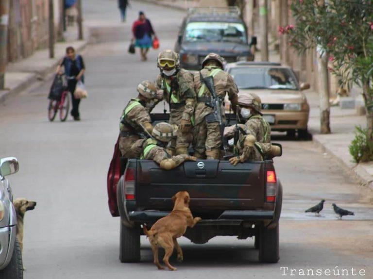 002 - Cães abandonados perseguem carro de militares e acabam sendo adotados