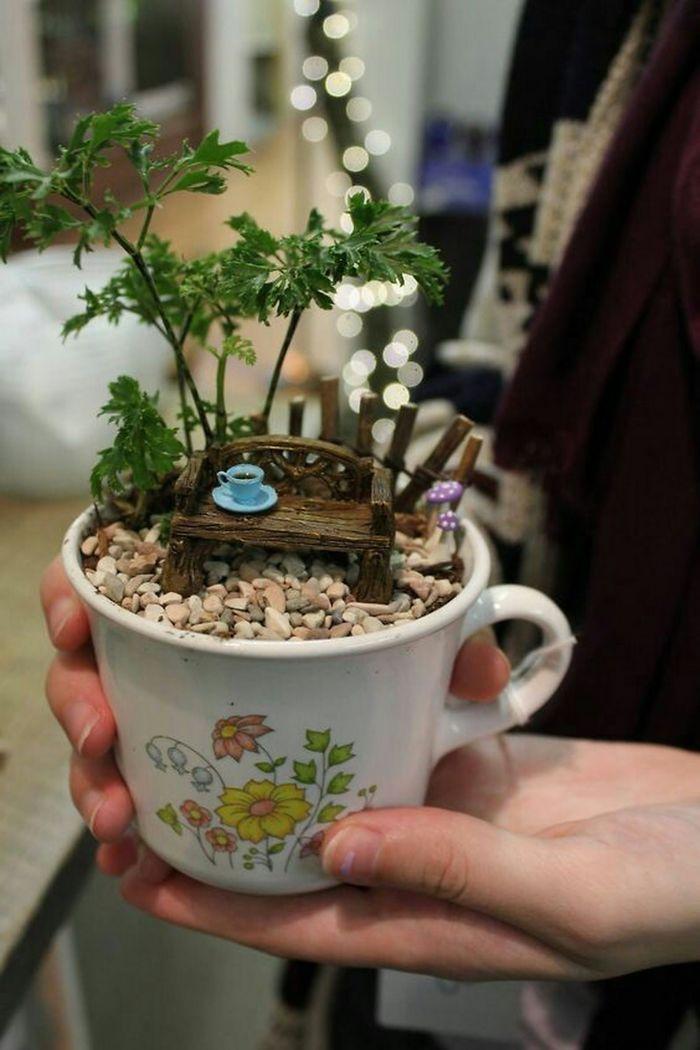 10 5e984705c3f6c 700 - Teacup Gardens, são jardins em xícaras e trouxemos 10 exemplos maravilhosos para vocês admirarem