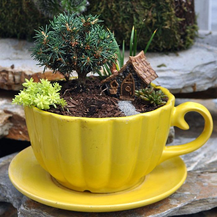 15 5e984713267b3 700 - Teacup Gardens, são jardins em xícaras e trouxemos 10 exemplos maravilhosos para vocês admirarem