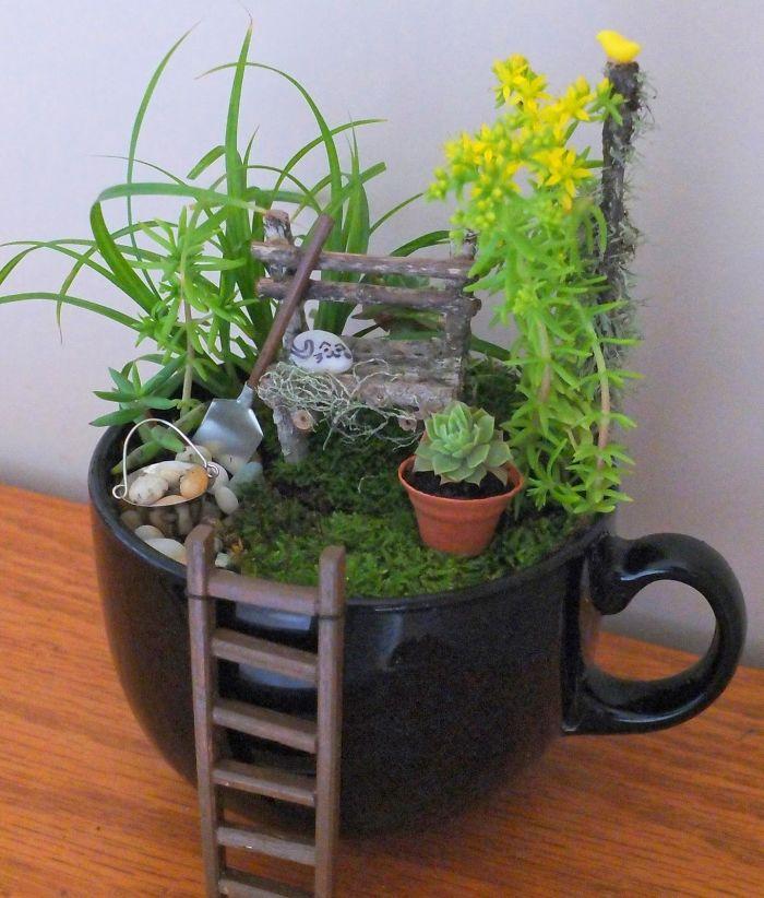 16 5e9847160fbfc 700 - Teacup Gardens, são jardins em xícaras e trouxemos 10 exemplos maravilhosos para vocês admirarem