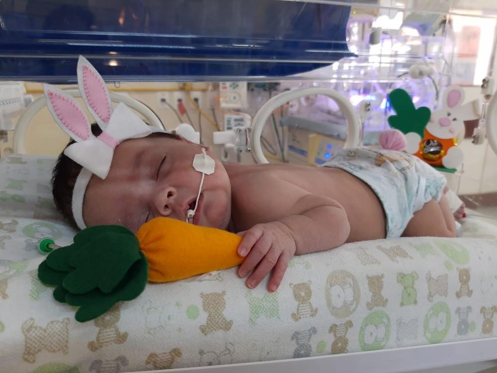 coelhinho1 - Bebês internados em UTI Neonatal ganham fantasias na Paraíba