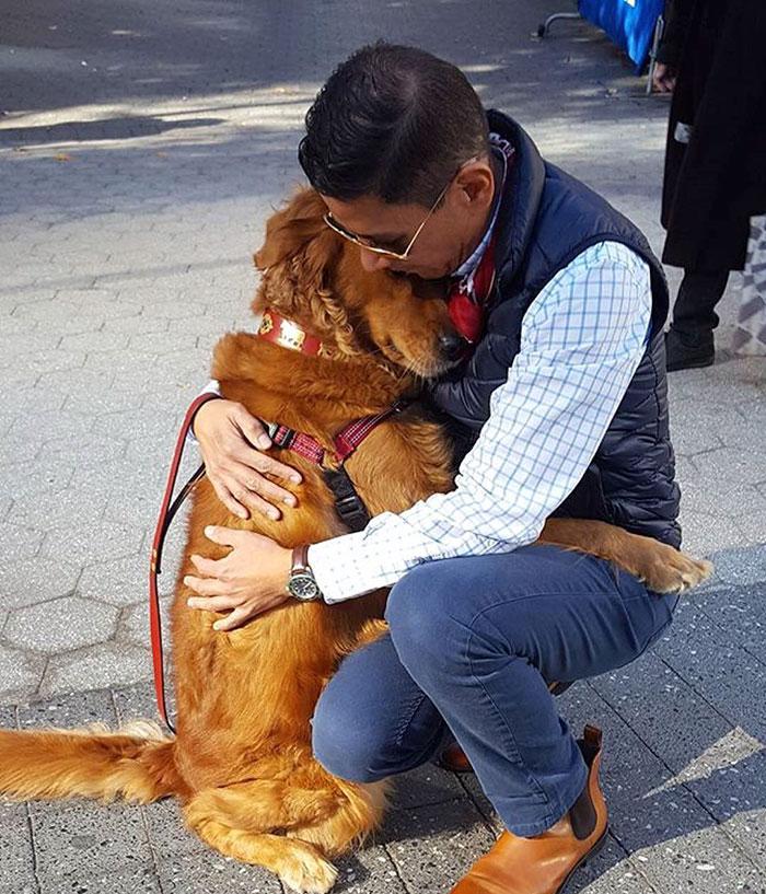 dog gives hugs louboutina retriever new york 12 - Este Retriever amou abraçar e está obcecado em abraços