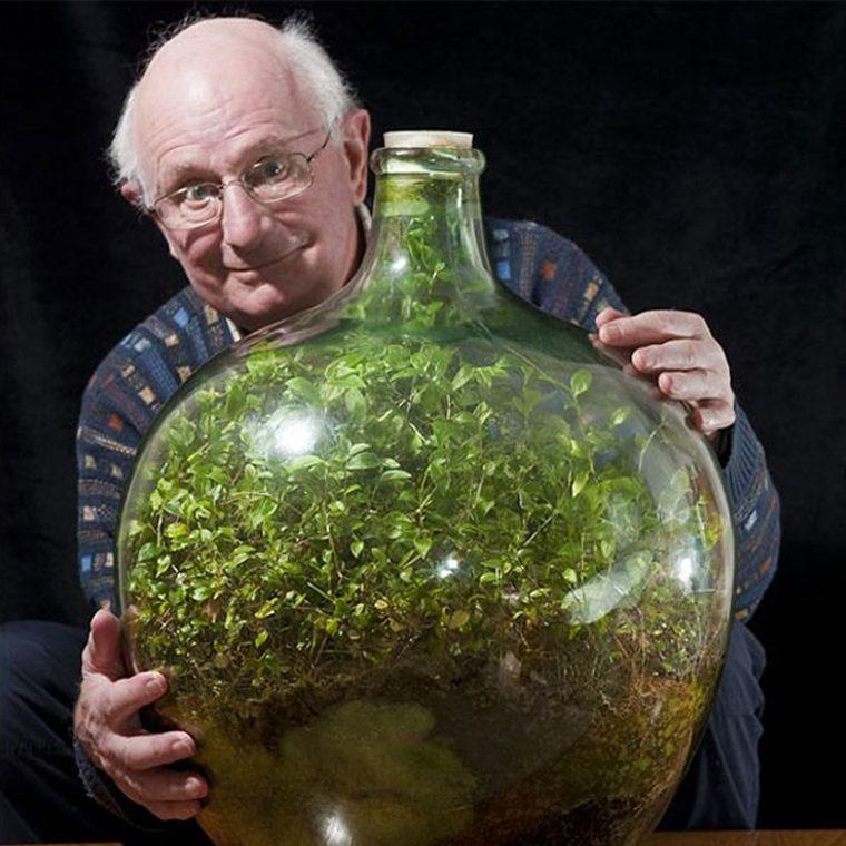 jardim 4 760x760 1 - Em 1972 esse homem fez jardim em garrafa e sem receber água permanece saudável e auto-suficiente