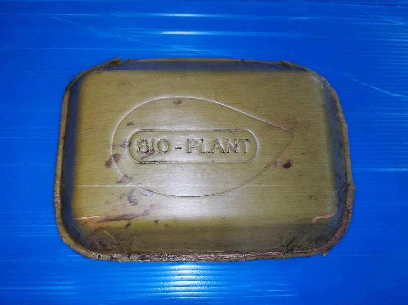 3 13 - Jovens criam pratos de folhas de bananeira que degradam em 60 dias