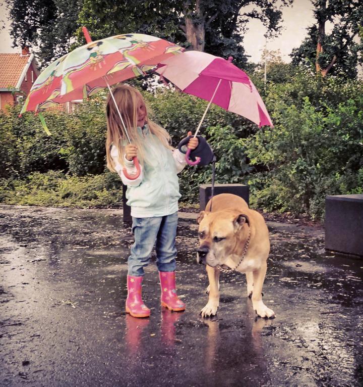 lynn y jaden perro fiel triste 10 - Com apenas 6 anos, menina fica com seu cão idoso até seu último suspiro