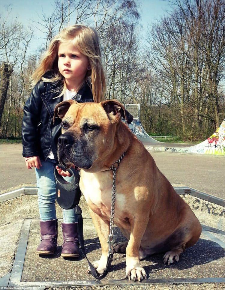 lynn y jaden perro fiel triste 4 750x967 1 - Com apenas 6 anos, menina fica com seu cão idoso até seu último suspiro