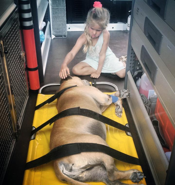 lynn y jaden perro fiel triste 7 - Com apenas 6 anos, menina fica com seu cão idoso até seu último suspiro