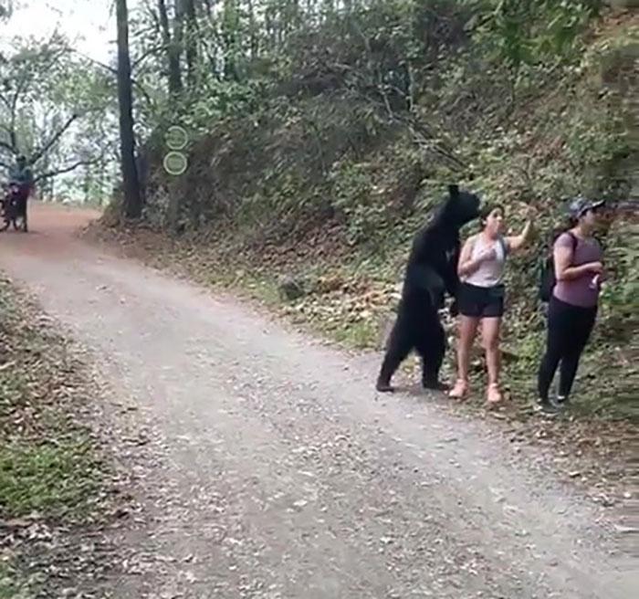 2 5f1567ad46349 700 - Urso se junta a mulheres em caminhada e posa para selfies