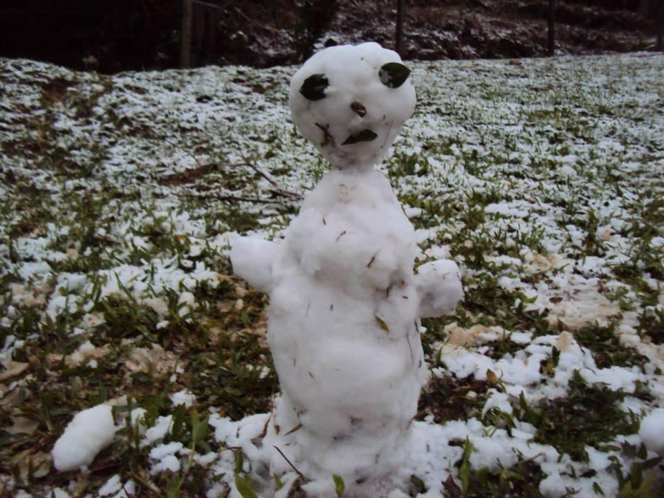 "olafchernp - Bonecos de neve no Brasil viralizam pela feiura: ""Olaf Chernobyl"""